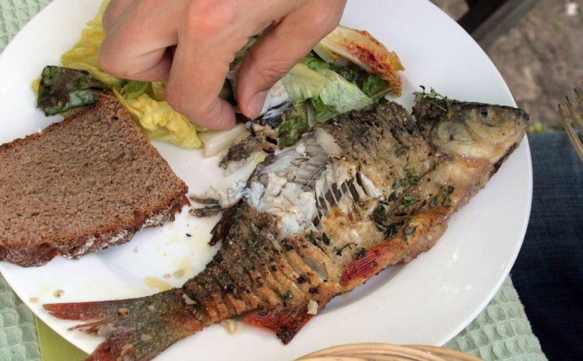 rotfeder gebraten aus Fischkochbuch Frische Fische