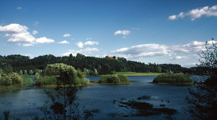 Teichlandschaft mit Enten, Inseln und Schloss, die aussieht wie eine große Seenplatte