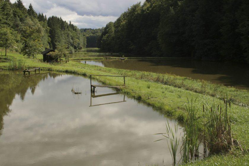 Teichkette Teichbau